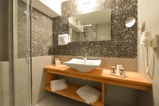 standard suite niriedes hotel shower
