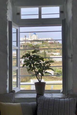 nireas house sifnos plant